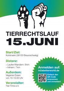 2013_braunschweig1_a_Flyer